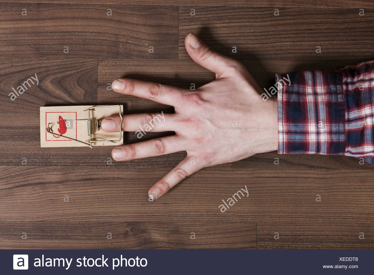 A man's finger trapped in a mousetrap, close-up of hand - Stock Image