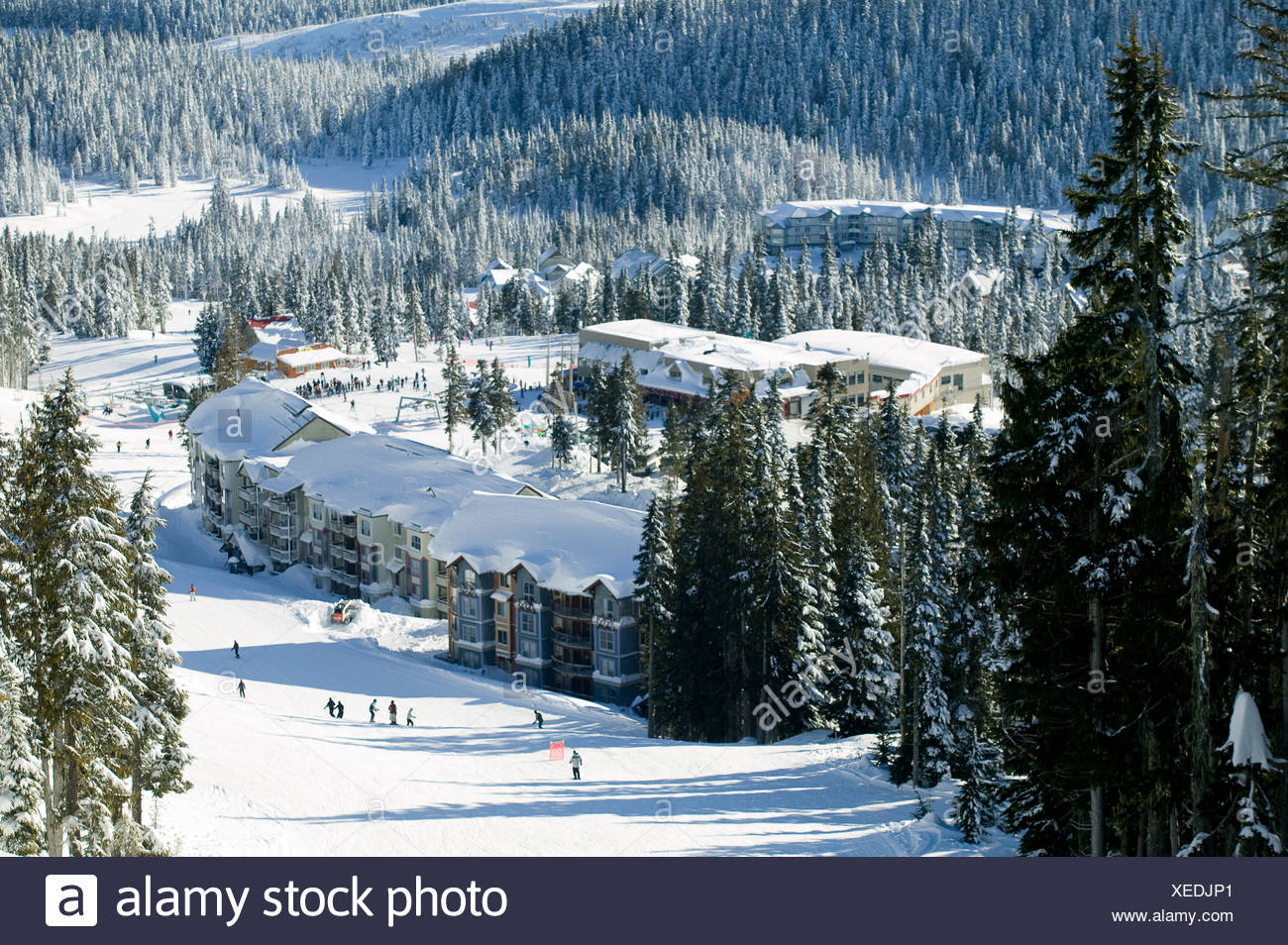 View from Linton's Loop to slopeside accomodation, Deer and Bear Lodge.  Daylodge in background.  Mt. Washington, Courtenay, Van - Stock Image