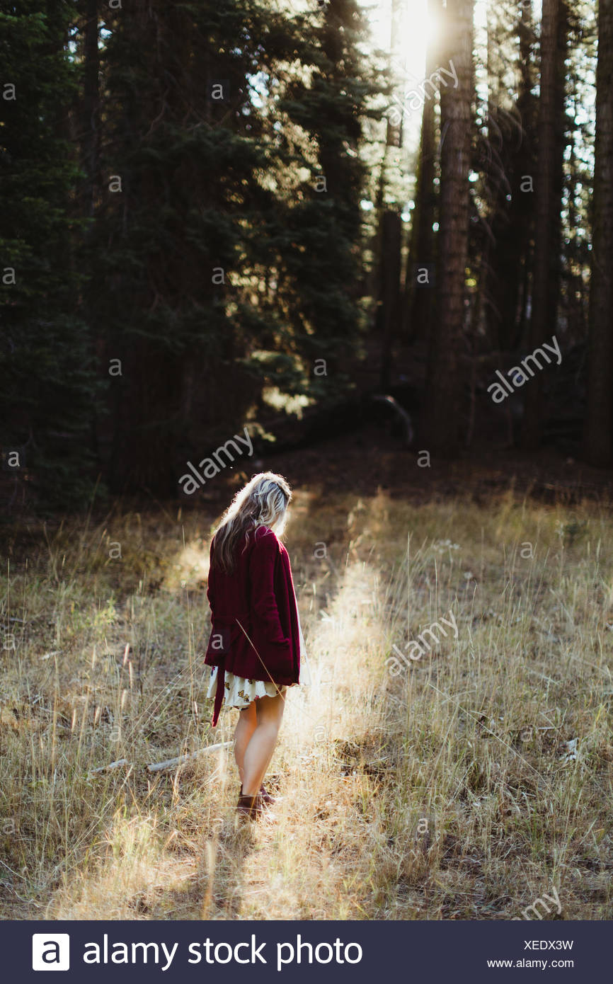 Pregnant woman wandering by forest, Sequoia national park, California, USA - Stock Image