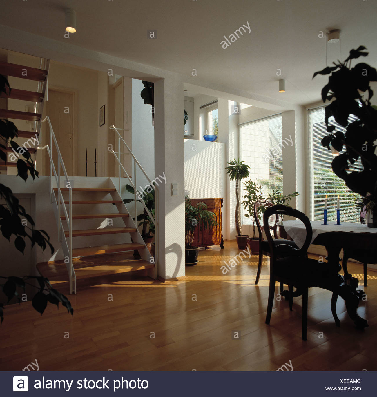 Wooden Flooring And Small Simple Staircase In Double Height Modern White Dining Room With Antique Chair Table Tall Plant