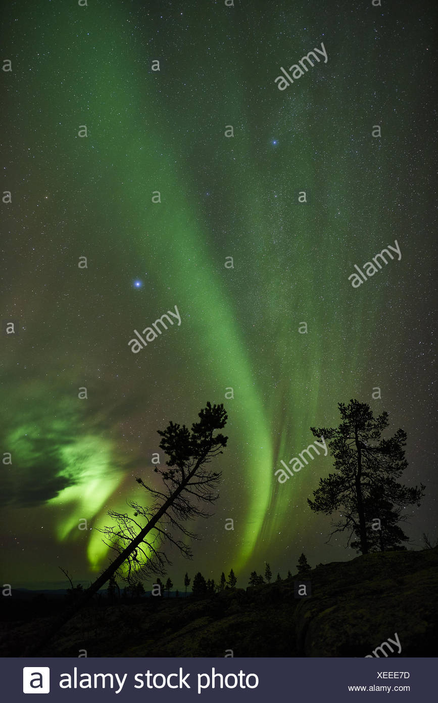 Northern lights, Lapland, Sweden - Stock Image