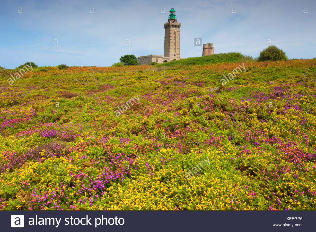 Cap Fréhel, France, Europe, Brittany, department Côtes d'Armor, coast, lighthouse - Stock Image