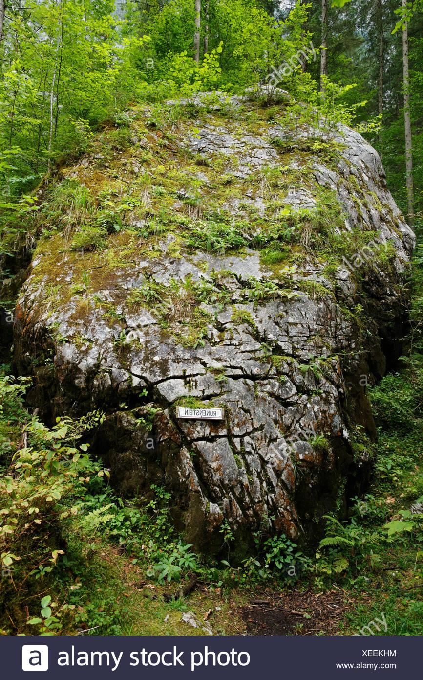Rune stone, Echerntal valley near Hallstatt, Salzkammergut, Upper Austria, Austria, Europe - Stock Image