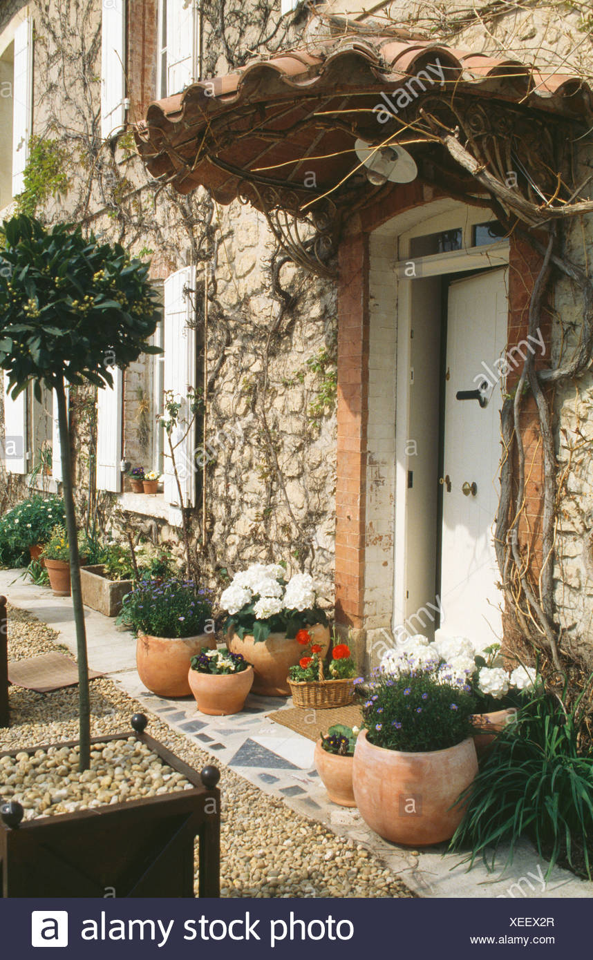 Good Pots Of White Geraniums And Clipped Bay Tree In Pot Beside White Front Door  With Pantiled Porch Of French Country House