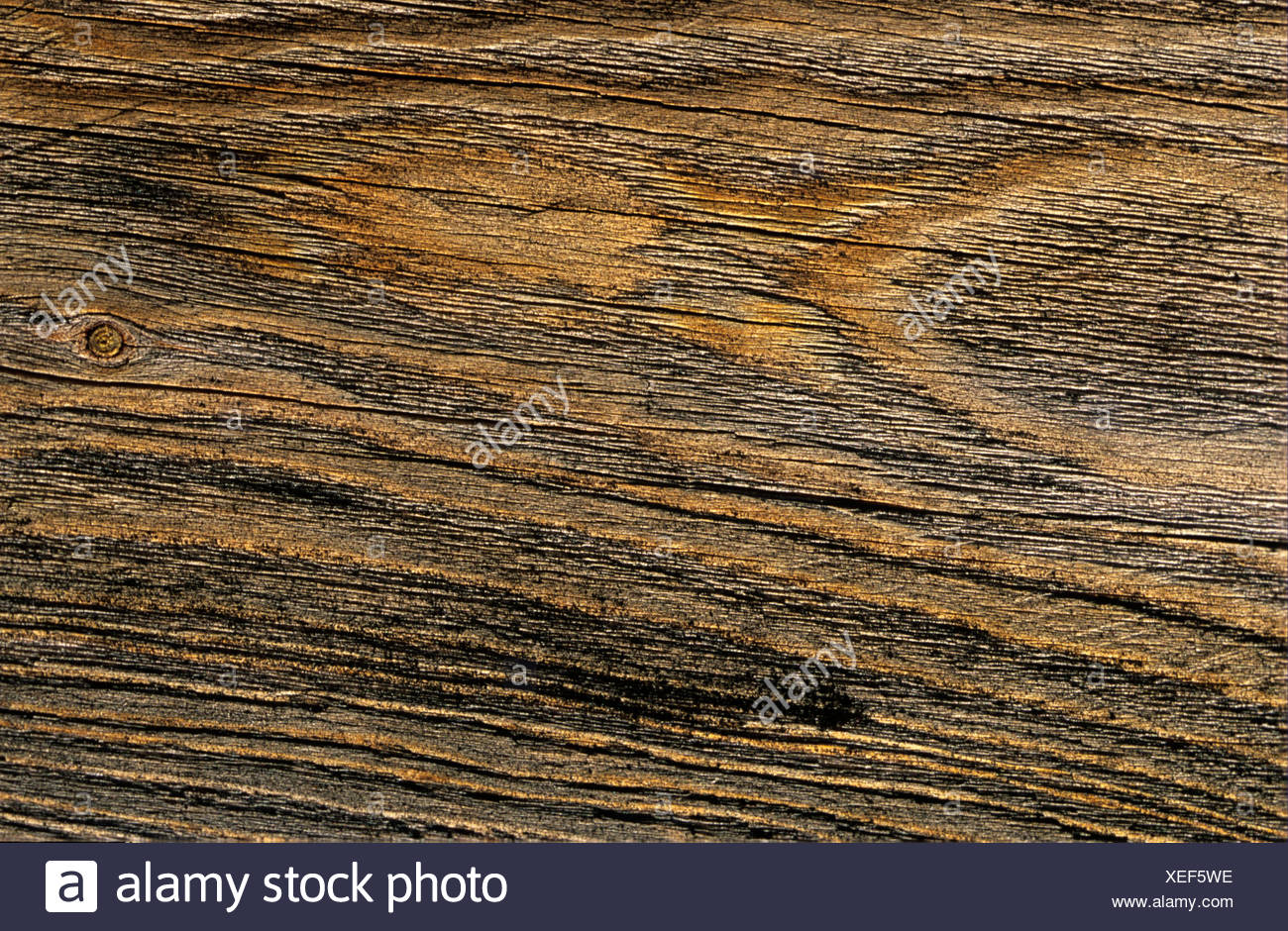Weathered, cracked board, knotted wood - Stock Image