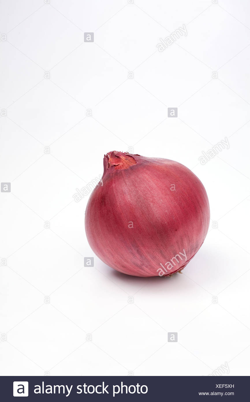 Sweet red onion on white background - Stock Image