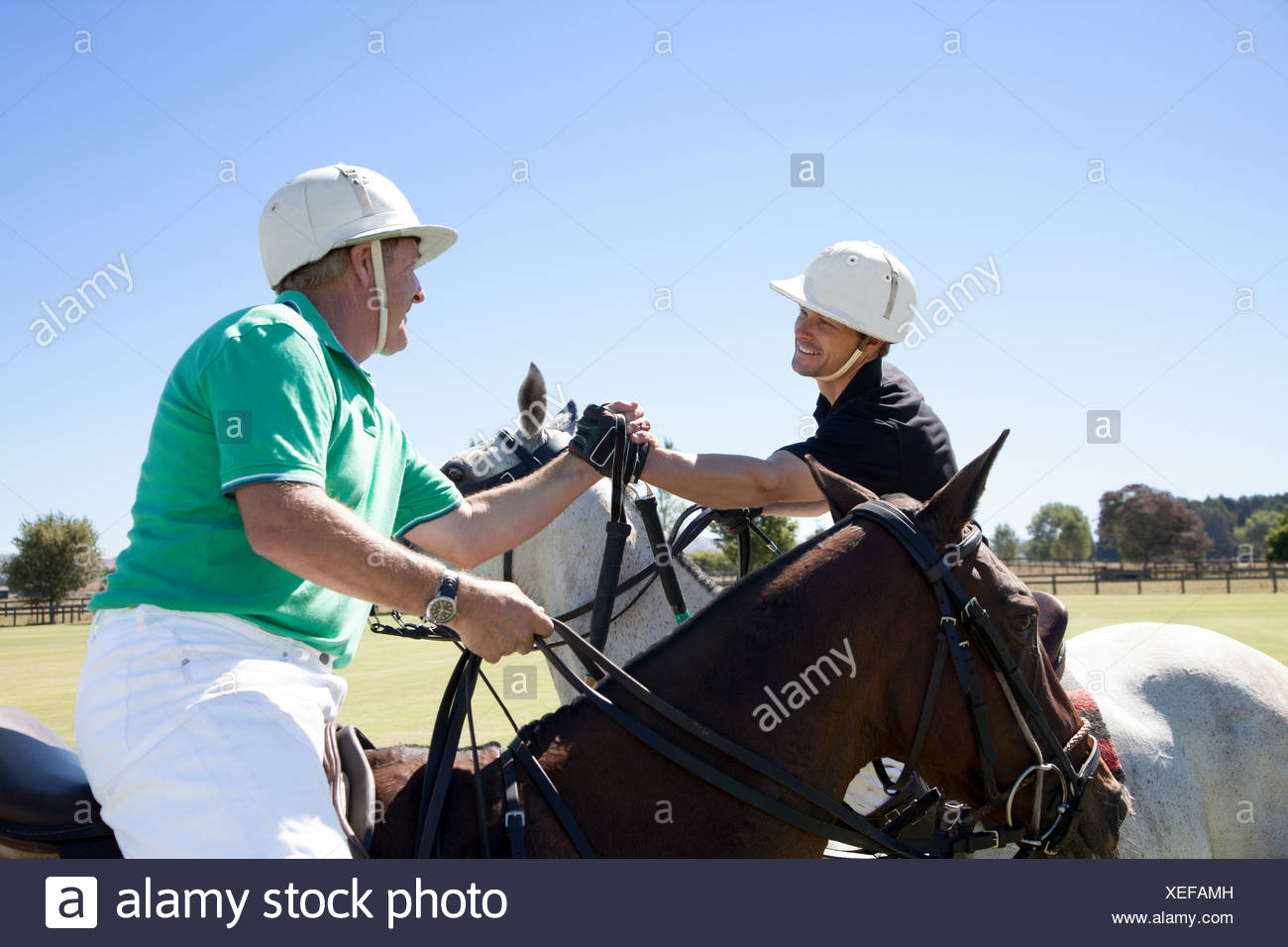Two polo players shaking hands - Stock Image