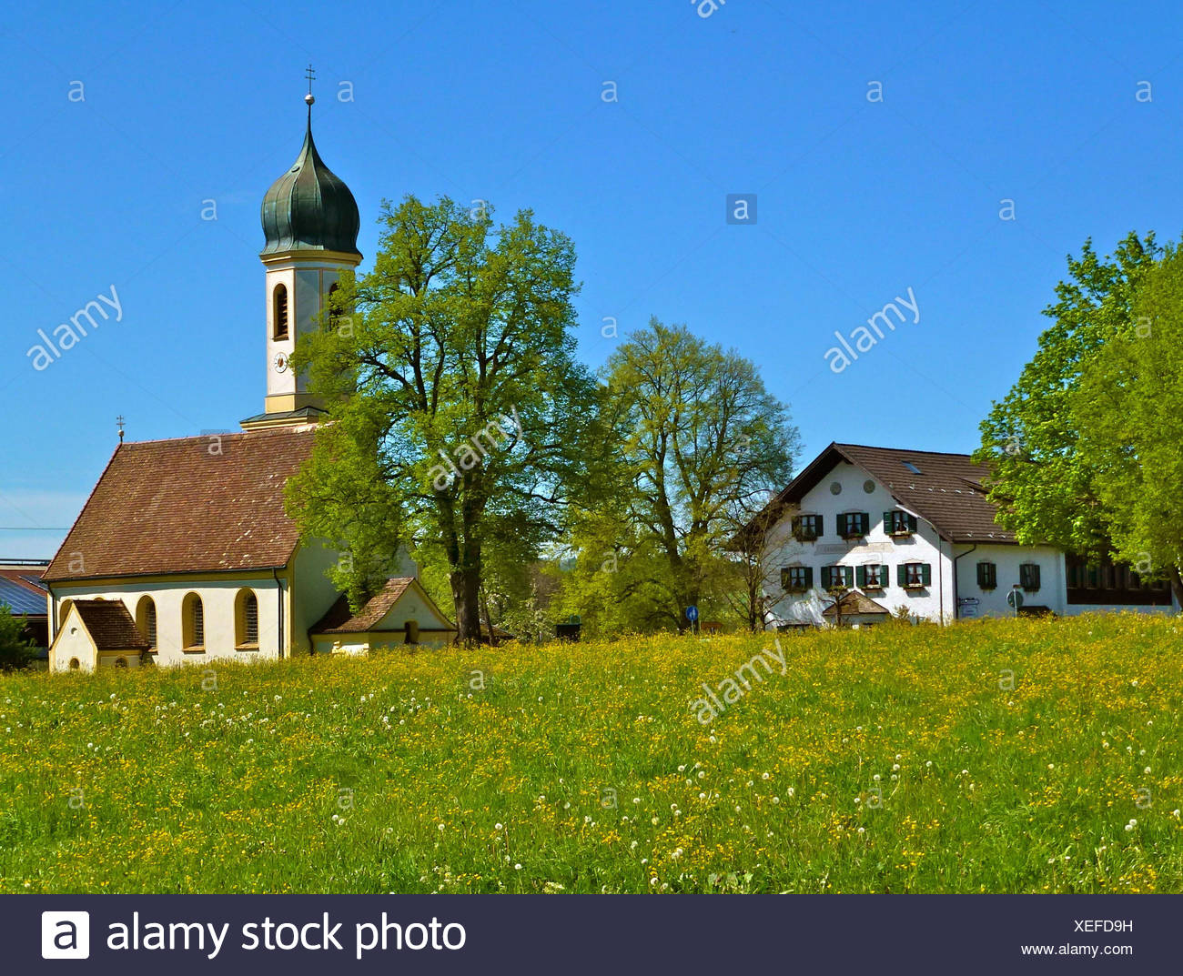 Germany, Bavaria, Froschhausen am Riegsee (lake), St. Leonhard church, Pension St. Leonhard (guesthouse), Meadow, trees, blue heaven, spring - Stock Image
