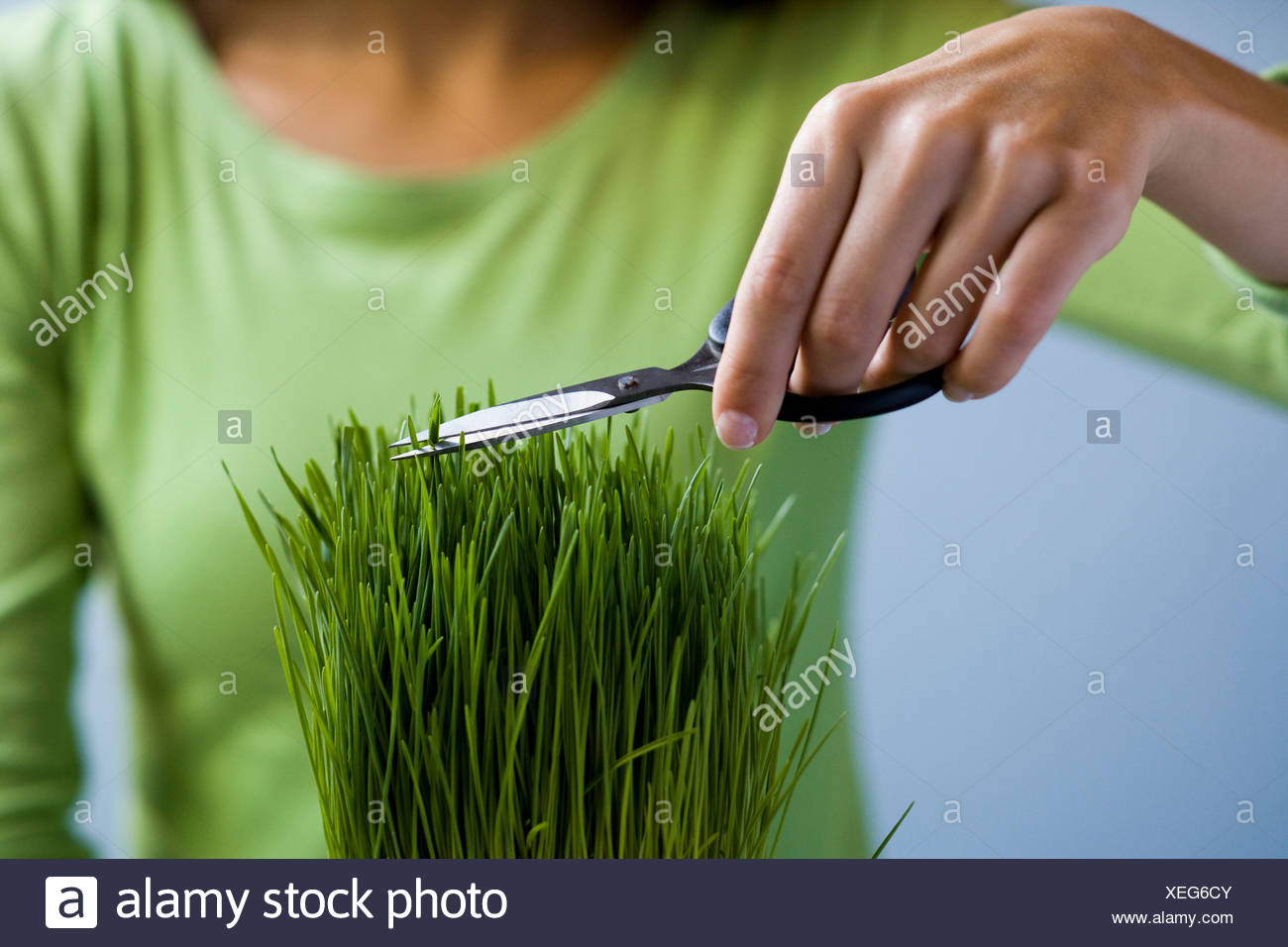 Woman trimming grass with scissors. - Stock Image