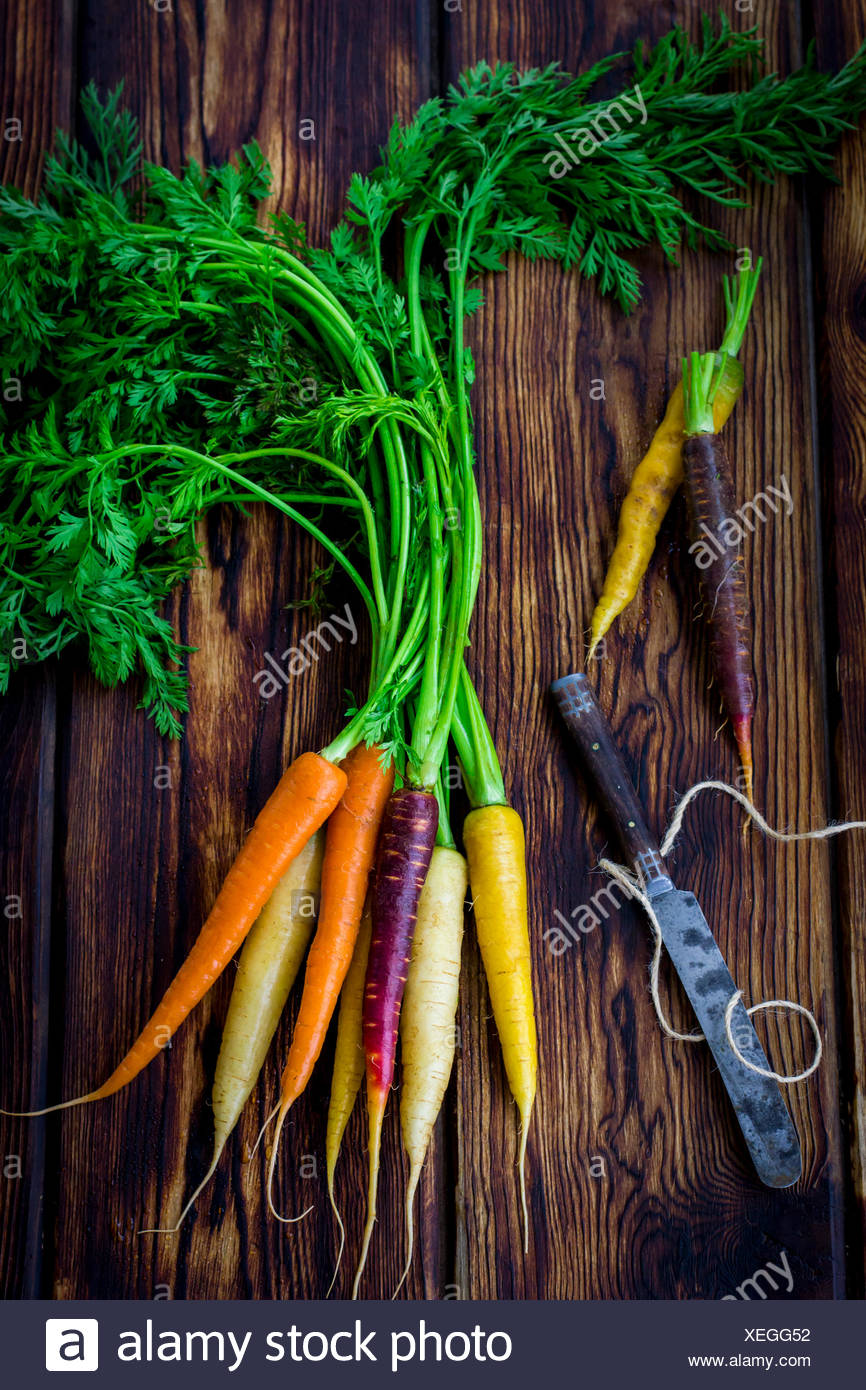 Rainbow carrots with knife and twine on dark wood table - Stock Image