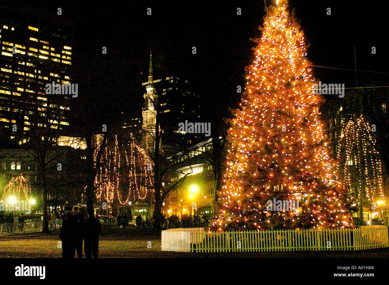 Christmas Tree Lights Boston Common Stock Photo Royalty Free  - Boston Christmas Tree Lighting