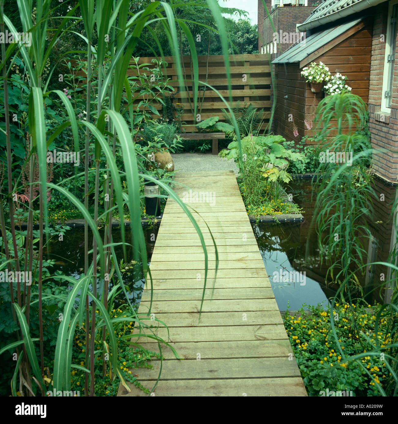 Decking Path Across Rectangular Pond In Front Of Small Modern House