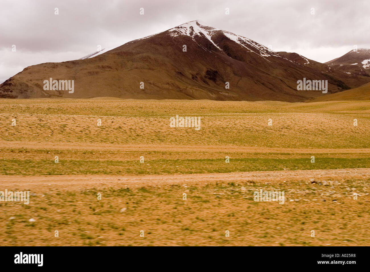 Yellow soil and brown snow capped mointain in rupshu for Soil yellow color