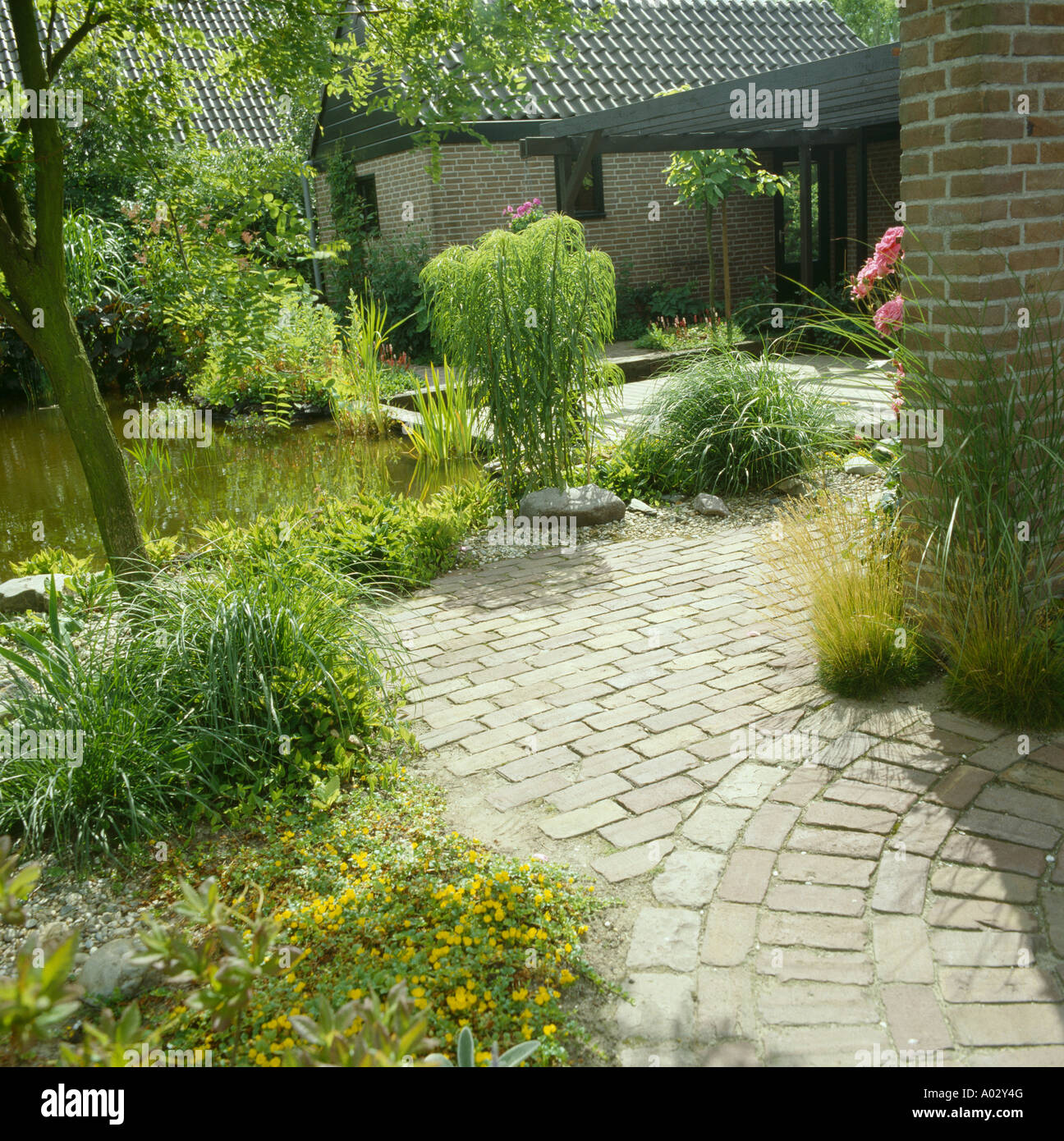 Paving and planting around pond in townhouse garden stock for Plants around garden pond