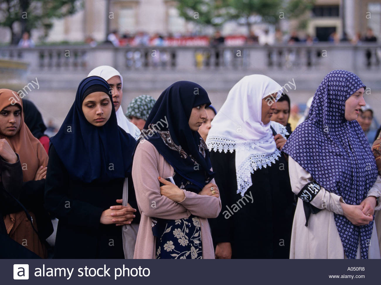 trafalgar muslim single women Muslim single women - nowadays online dating becomes easier sign up for free today and start flirting and chatting with some of the best singles near you in minutes.
