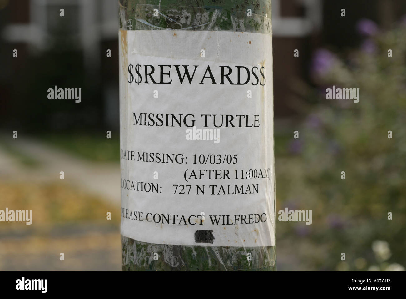 Wanted Poster Template Usarmycorpsofengineers most wanted poster – Missing Reward Poster Template