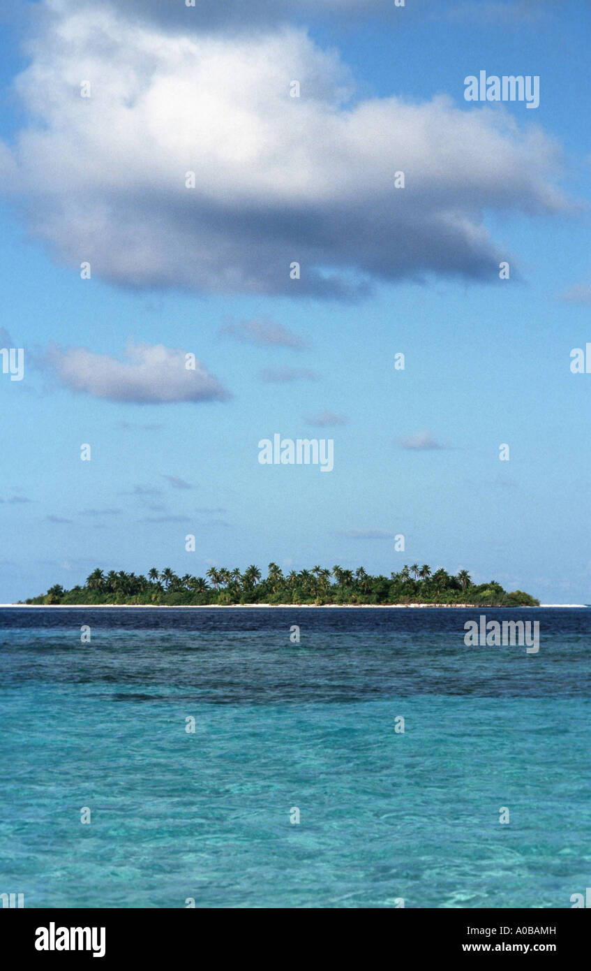 Coral island, Maldives
