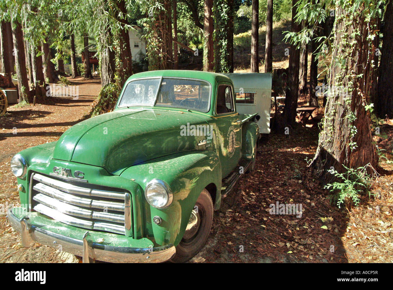 An old dusty antique green GMC 150 pickup truck with a trailer ...