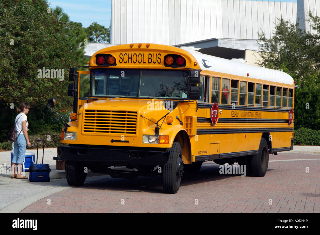 Thomas Built Buses >> School Bus Yellow American bus USA Used to transport American Stock Photo, Royalty Free Image ...