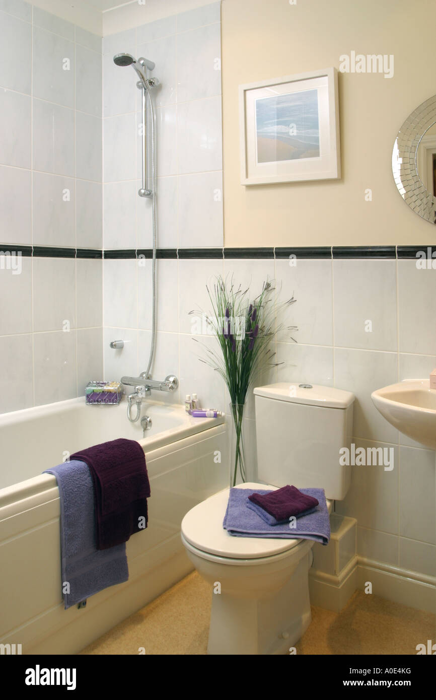 Bathrooms In Show Homes. A. Closet And Bathroom Combined Great Use ...