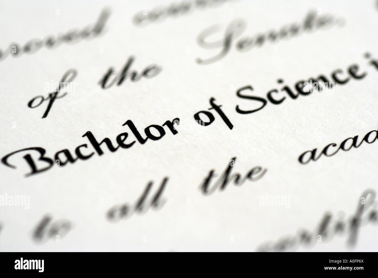 University Degree Certificate. Bachelor Of Science Stock Photo ...