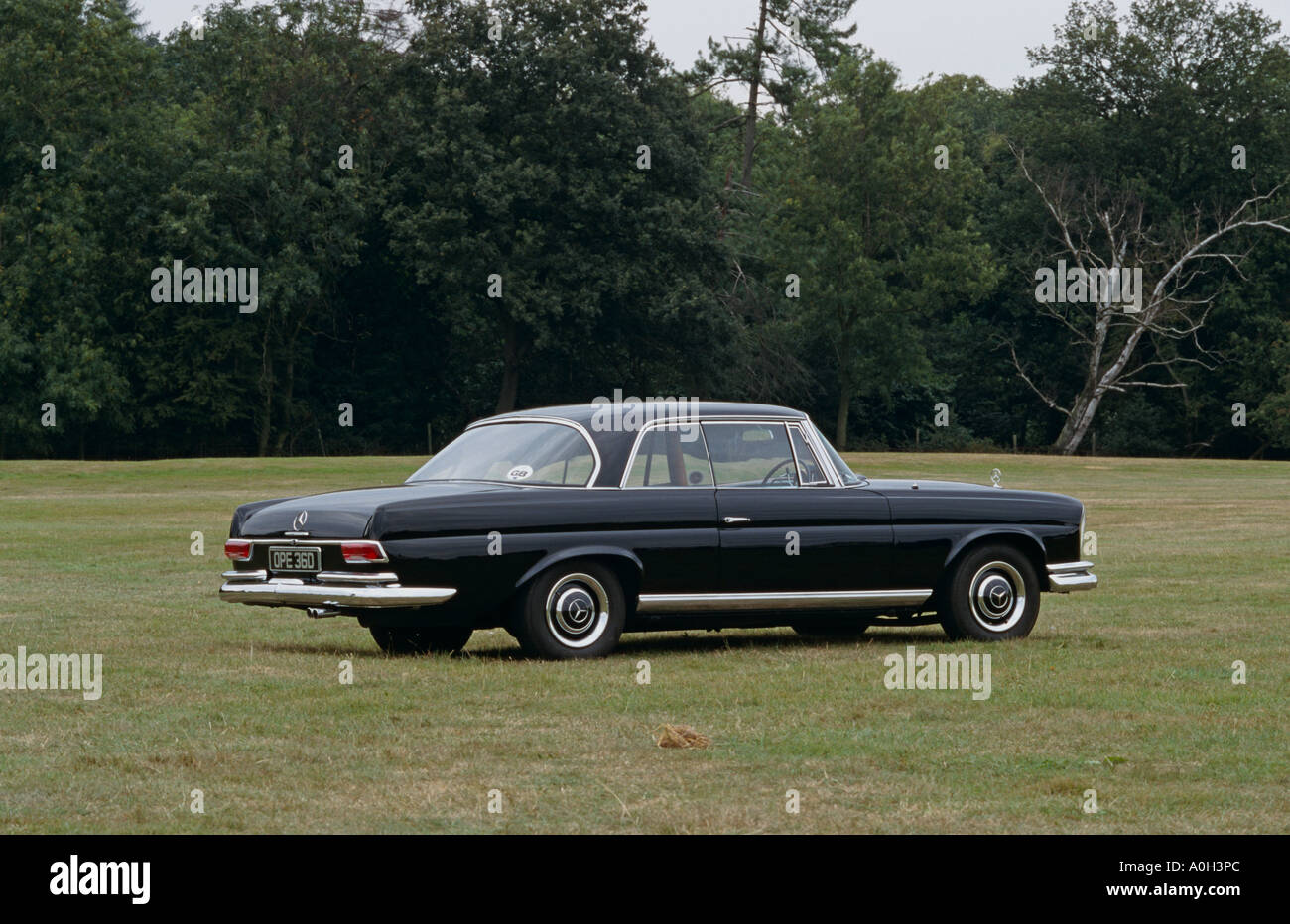 Mercedes Benz 250se Coupe Of 1966 1965 To 1967 Stock