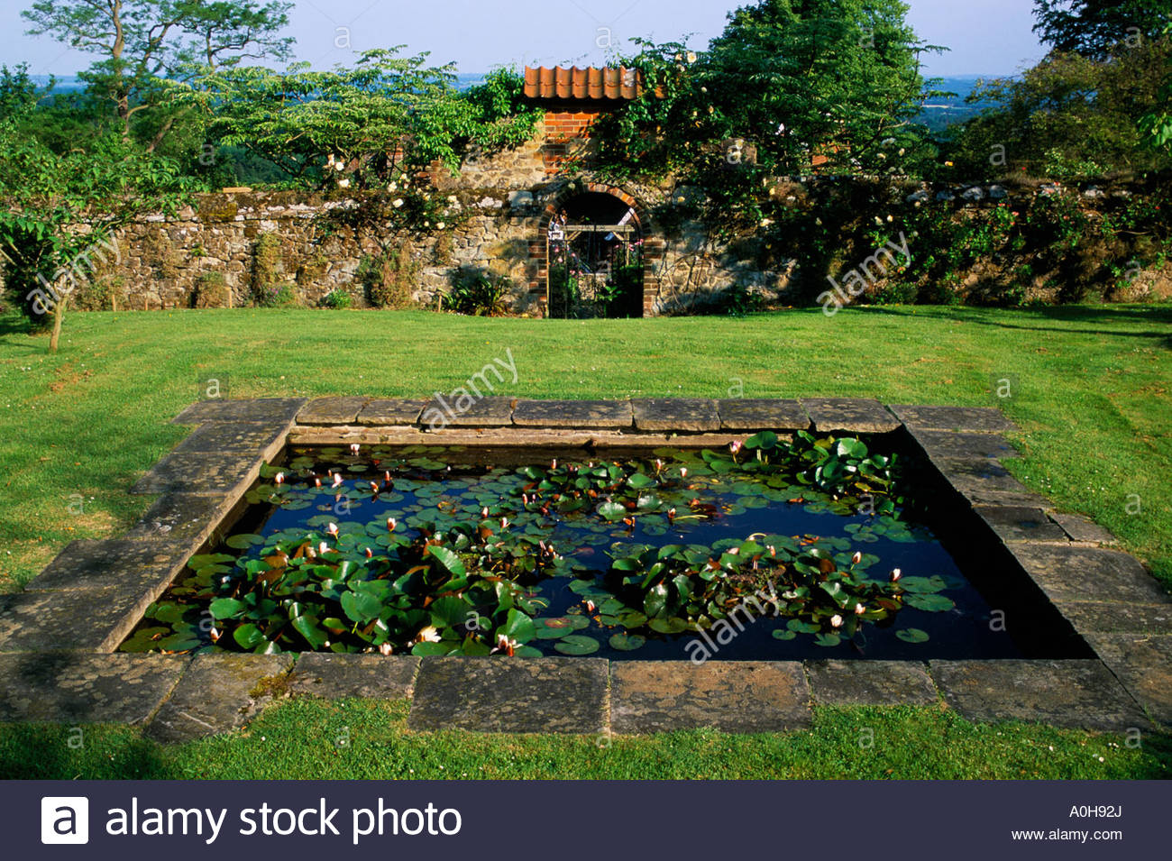 Private Garden Kent Formal Square Pond With Waterlilies In Lawn Stock Photo Royalty Free Image