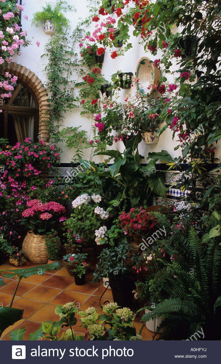 Cordoba Patio Garden Festival. Spain. Pots And Containers