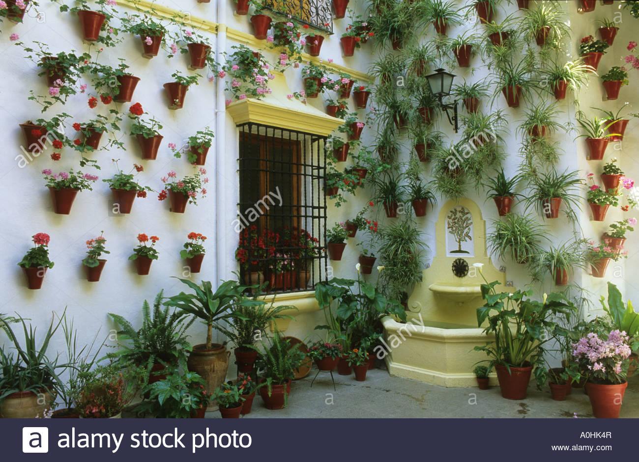 ... Cordoba Patio Festival Spain Pelargoniums In Wall Pots Courtyard Garden    Stock Photo