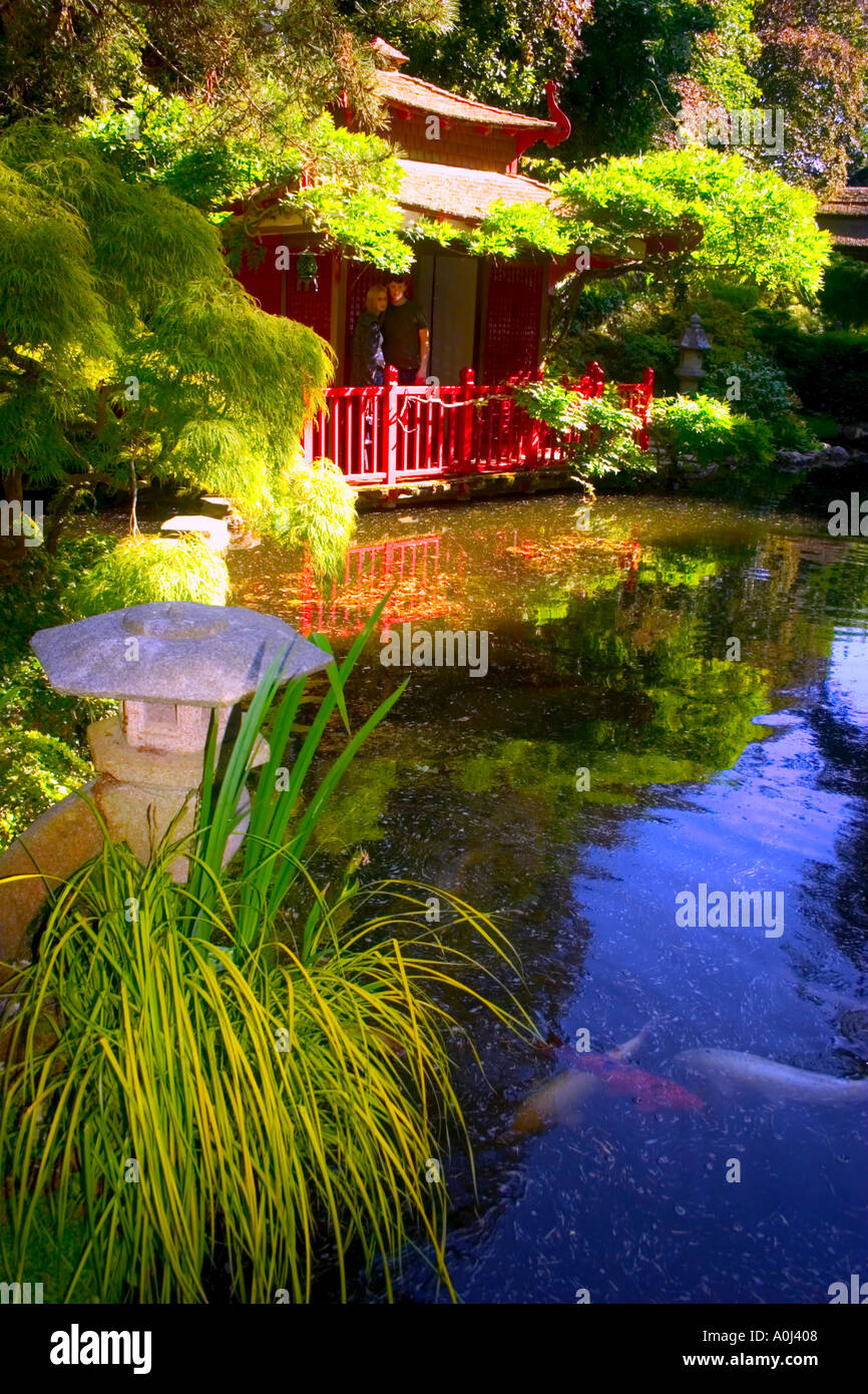 Japanese Garden Tranquil Japanese Building Ornaments Statues Water Pond Coy  Carp Fish Blue Water Romance Green Leaves