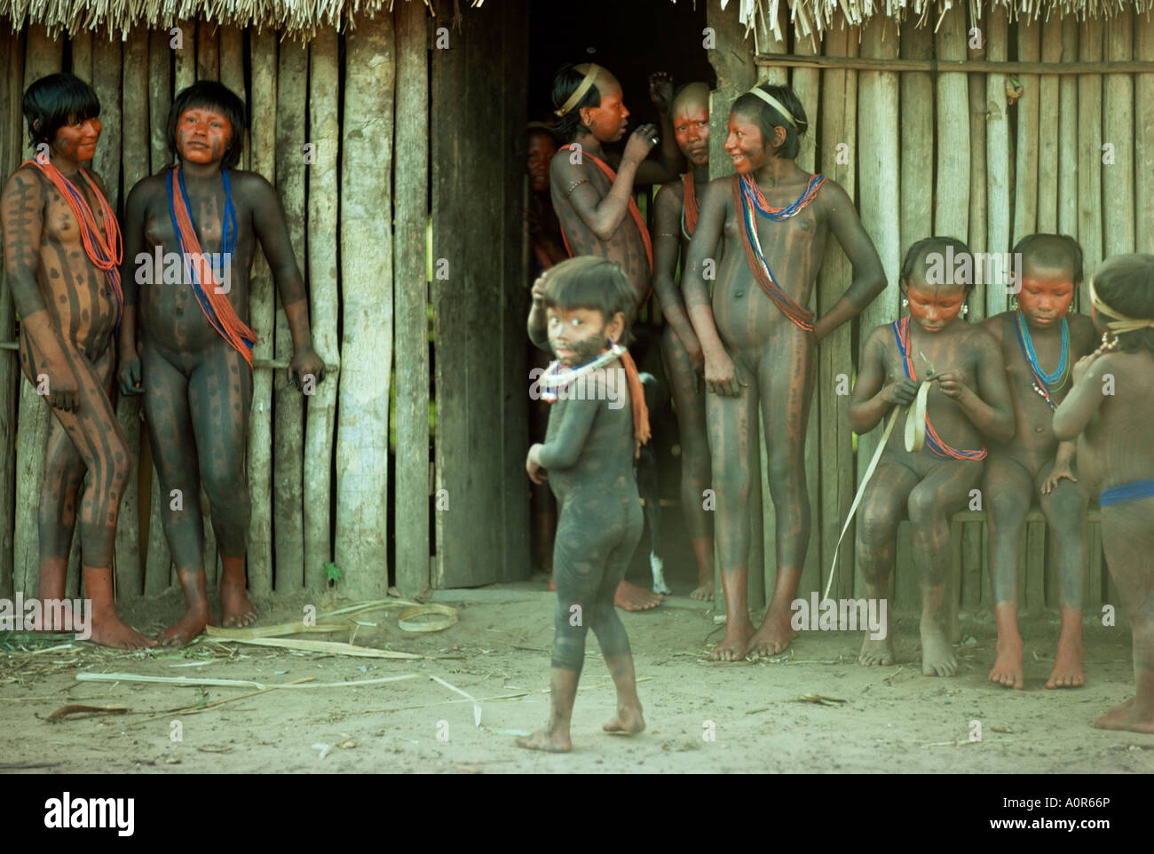 Xingu Brazil South America Stock Photo, Royalty Free Image ...