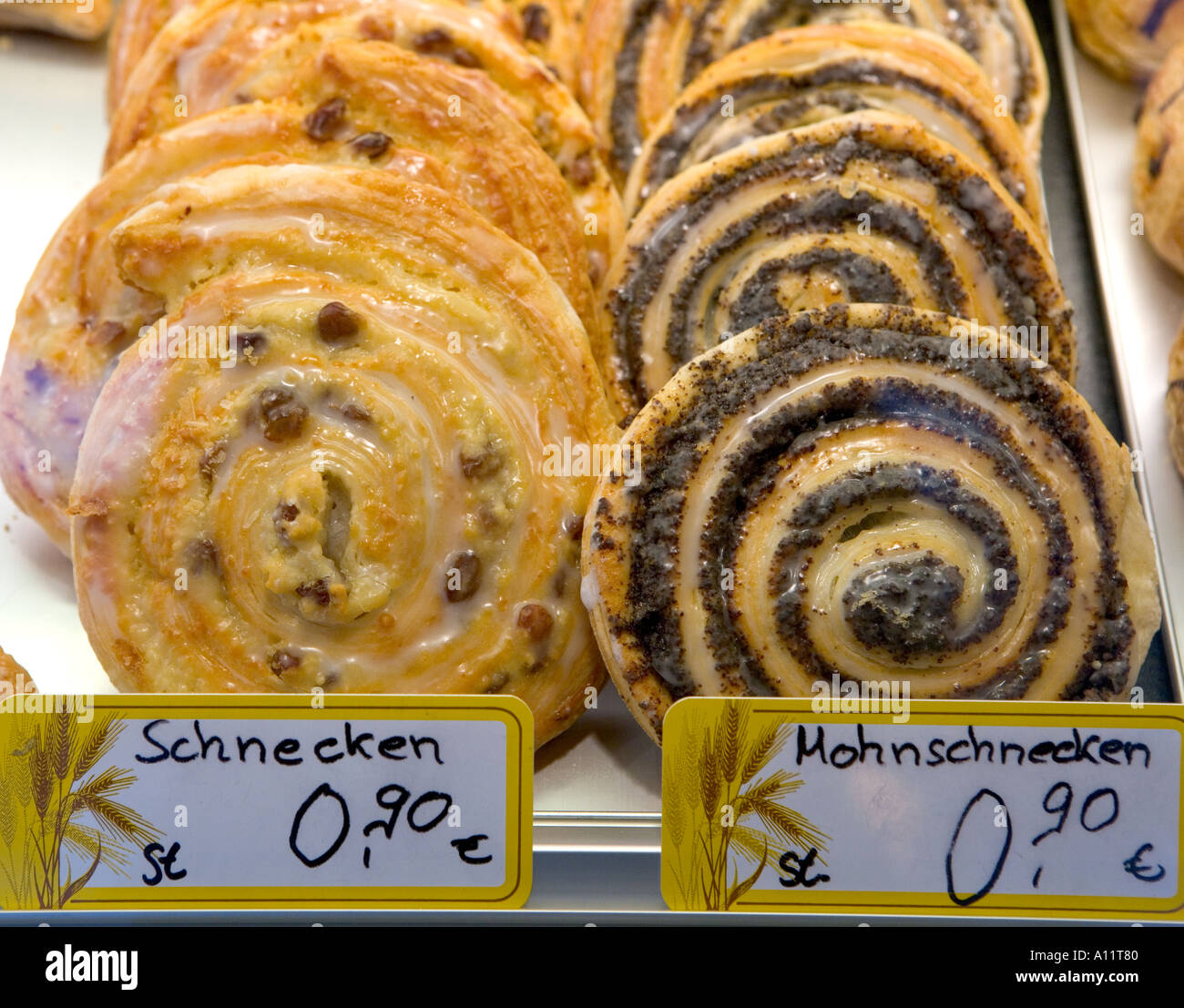 Image Gallery schnecken german