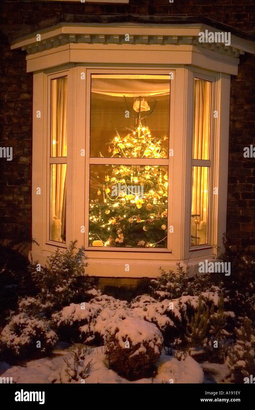 Christmas tree in terrace house window stock photo
