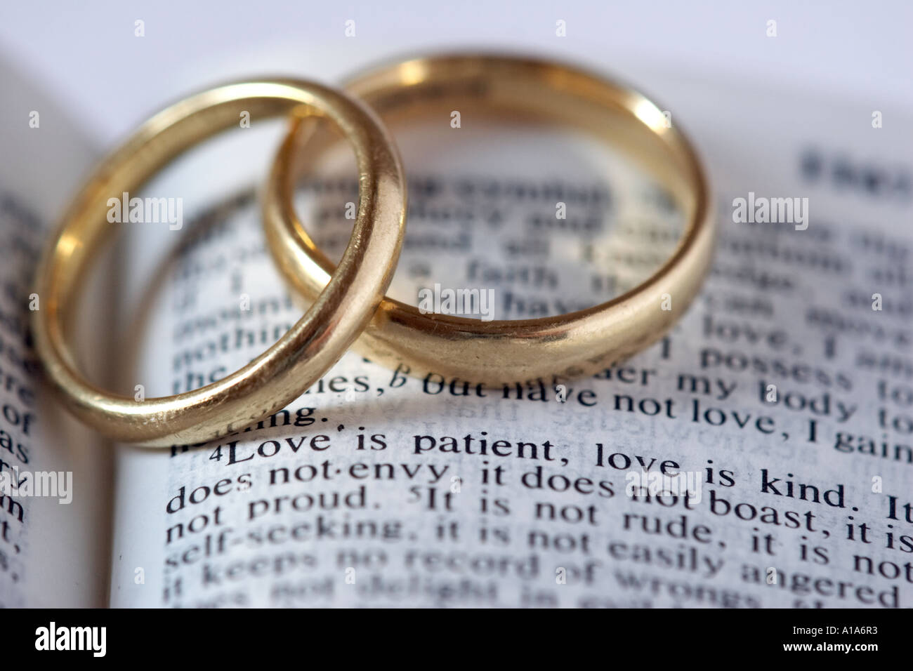 Wedding rings with Bible verse Stock Photo Royalty Free Image