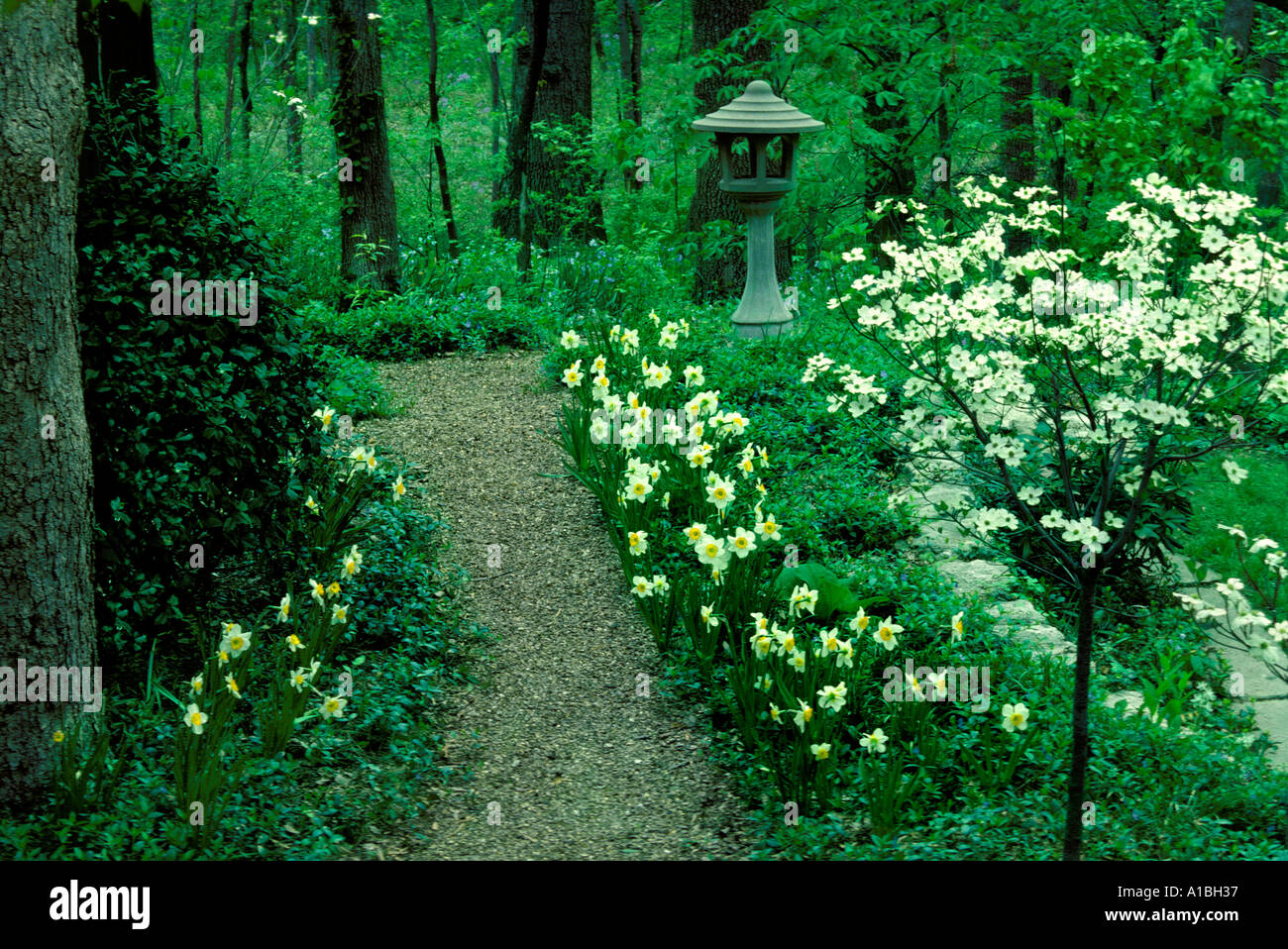 Lush formal garden path lined with blooming spring flowers for Formal japanese garden