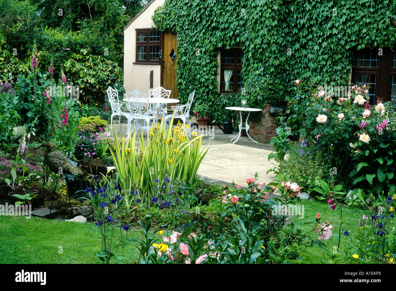 pond patio house and small garden plants flowers table chairs stock photo royalty free image. Black Bedroom Furniture Sets. Home Design Ideas
