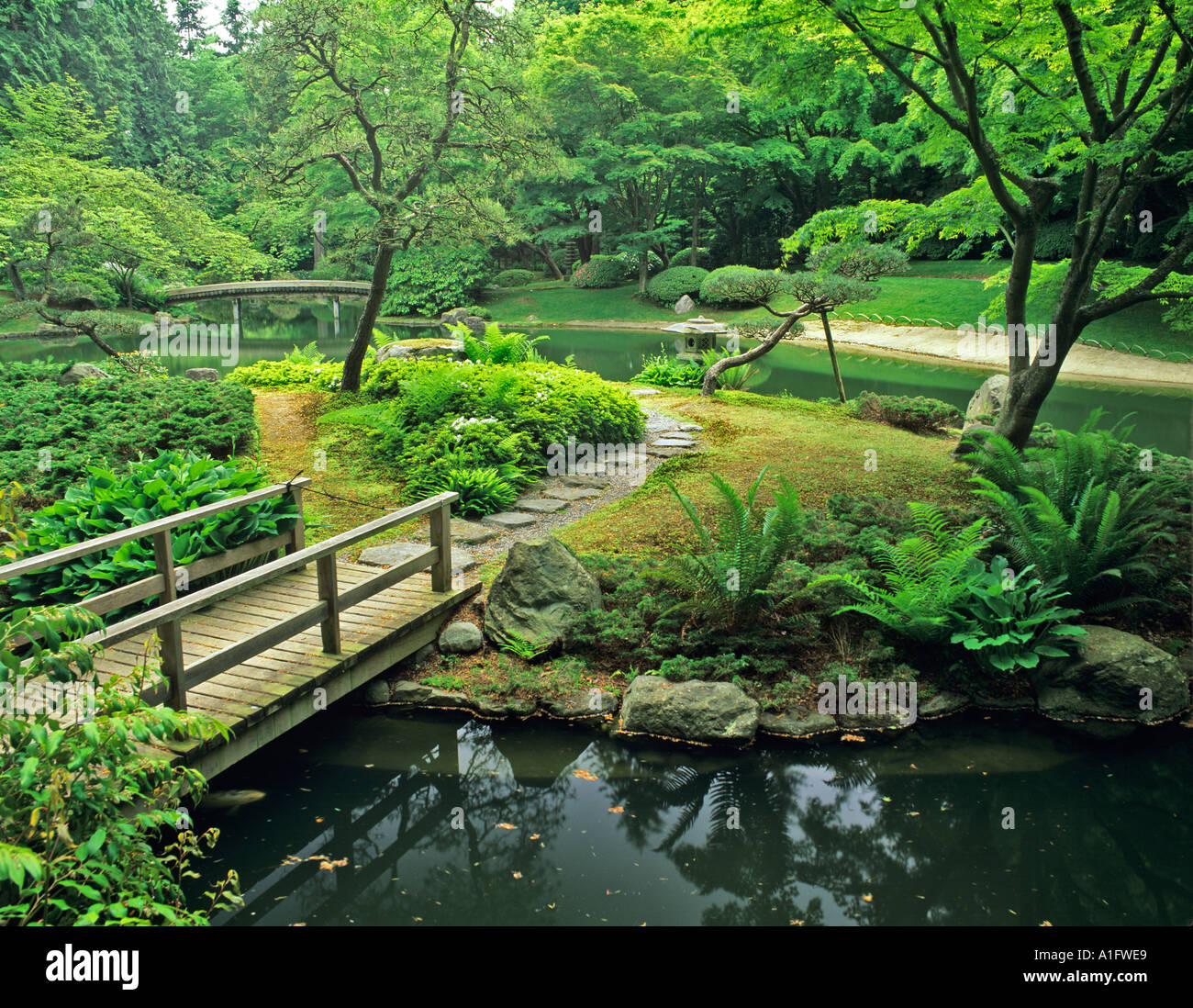 Design Japanese Pond pond and bridge at japanese garden nitobe vancouver bc bc