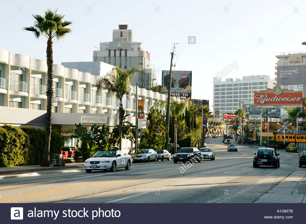 Sunset Blvd Hotels Hollywood Ca