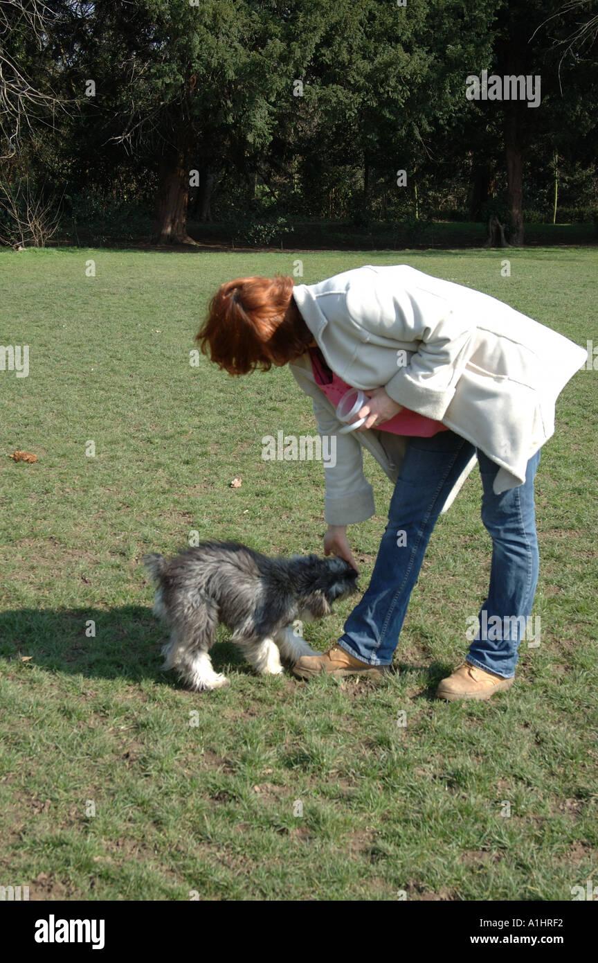 Chiswick Dog Walking