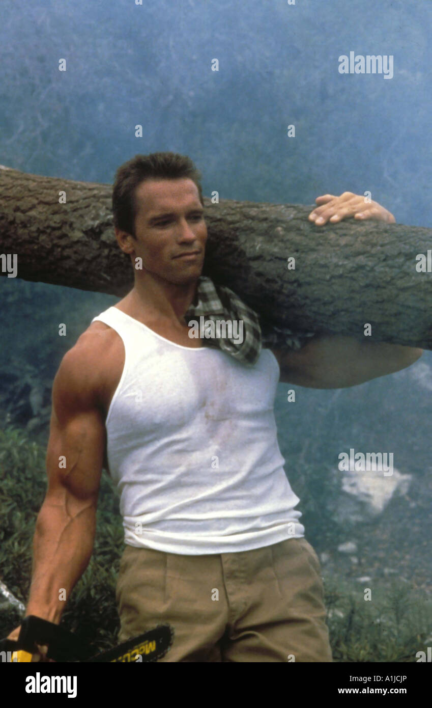 action film stock photos action film stock images alamy commando year 1985 director mark l lester arnold schwarzenegger stock image