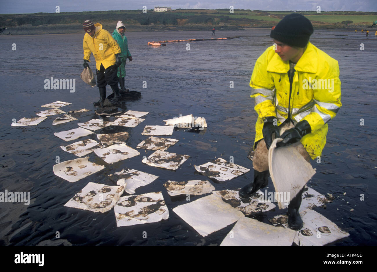 Oil clean up West Angle Bay Sea Empress oil spill Stock Photo ...