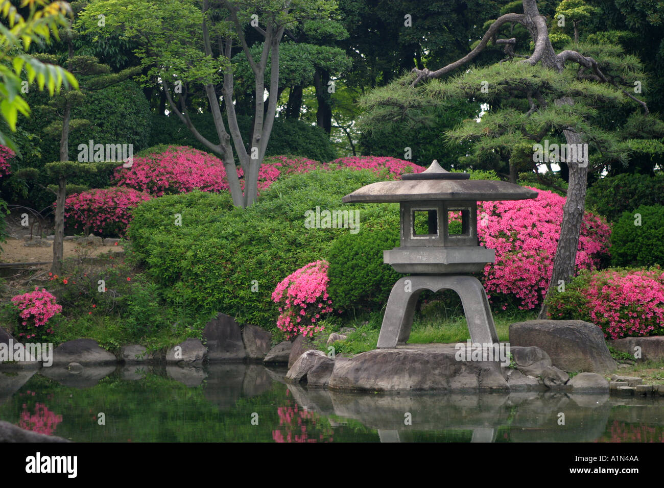 Typical stone lantern with bright pink plants in a for Typical landscaping plants