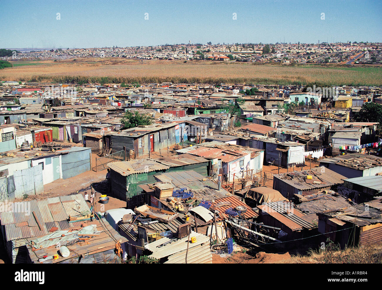 Homes In Shanty Town Area Of Soweto Near Johannesburg