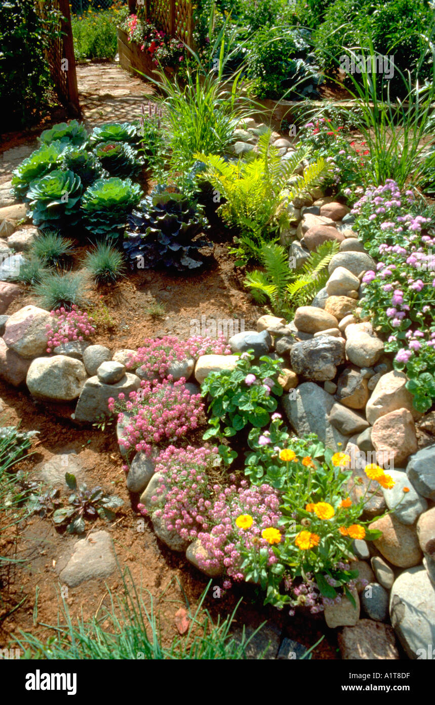 Merveilleux Rock Garden With A Variety Of Green And Flowering Plants. Edina Minnesota MN  USA