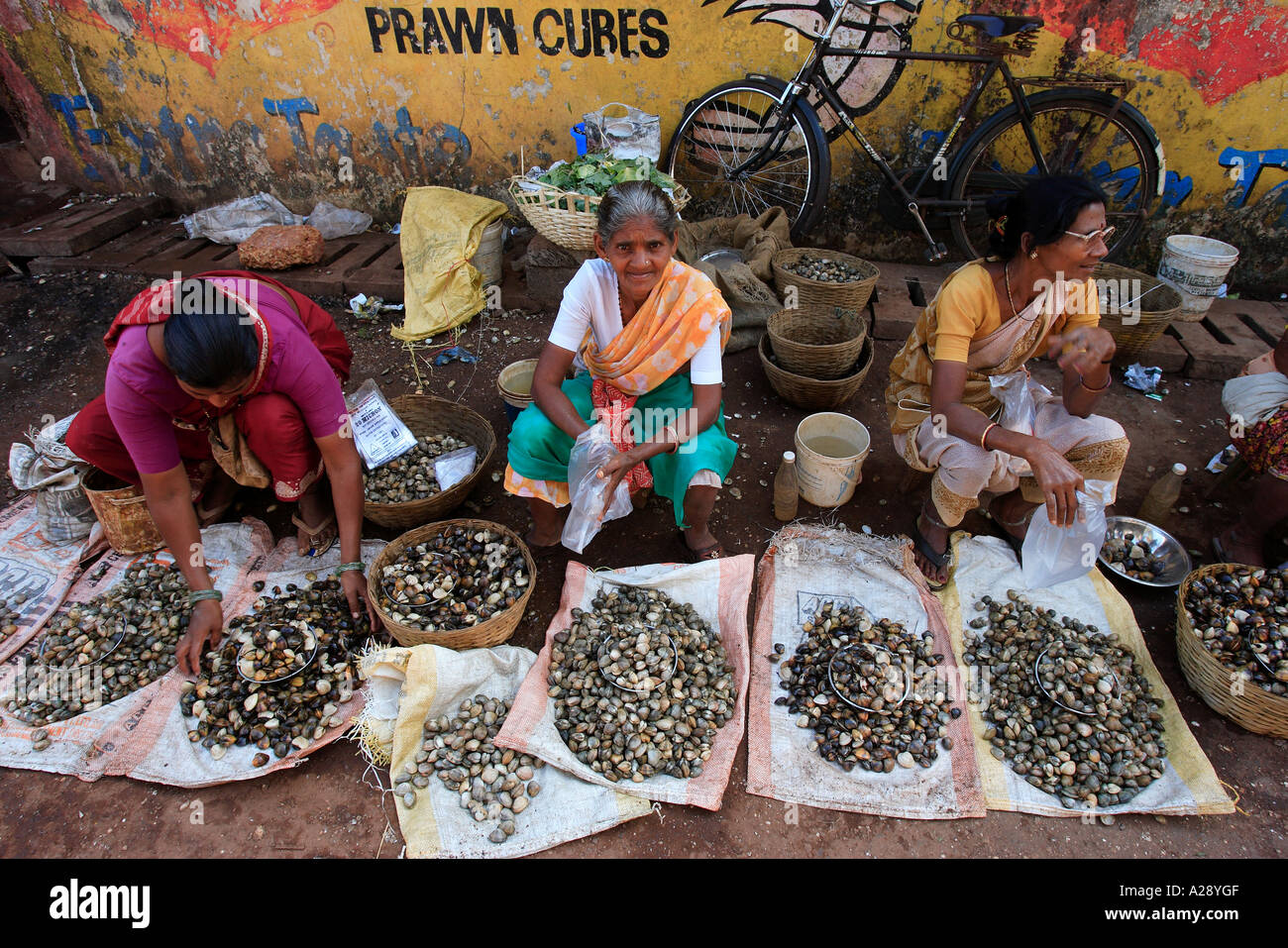 Market trader selling fresh shell fish mapusa city goa for City indian dining ltd t a spice trader