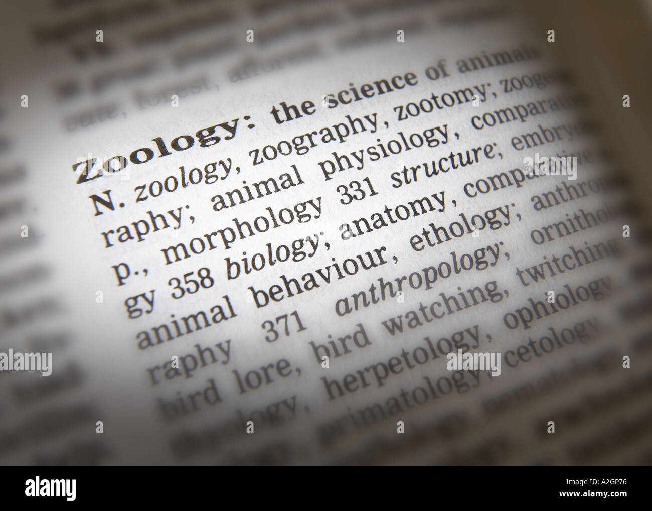 Electrophysiology study definition thesaurus