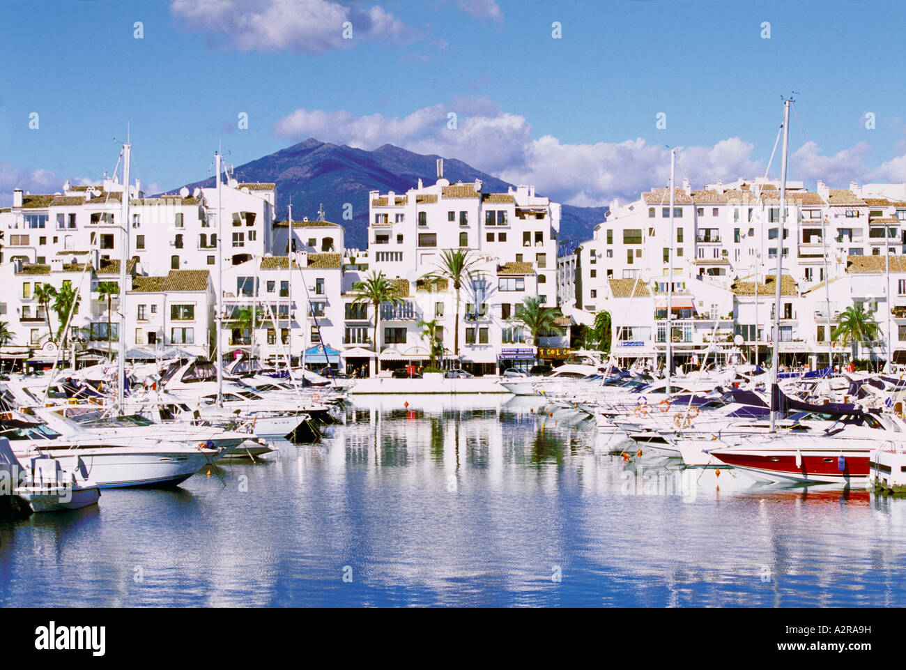 the marina and town at puerto banus costa del sol spain