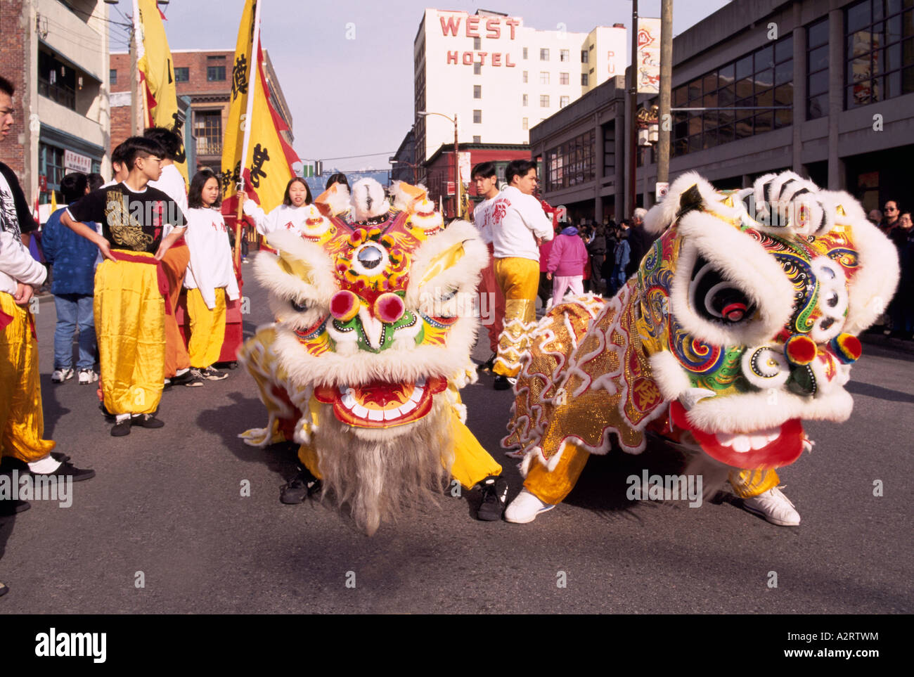 Uncategorized Chinese New Year Dance chinese new year lion dance aka dragon at parade and stock celebration chinatown vancouver bc british columbia canada
