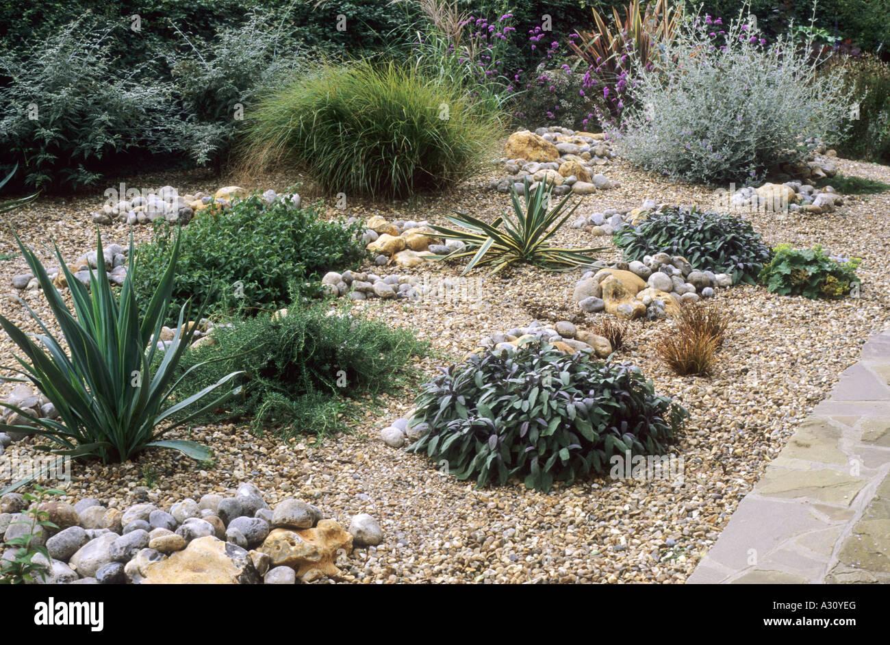 Gravel Garden grasses salvia drought tolerant plants dry