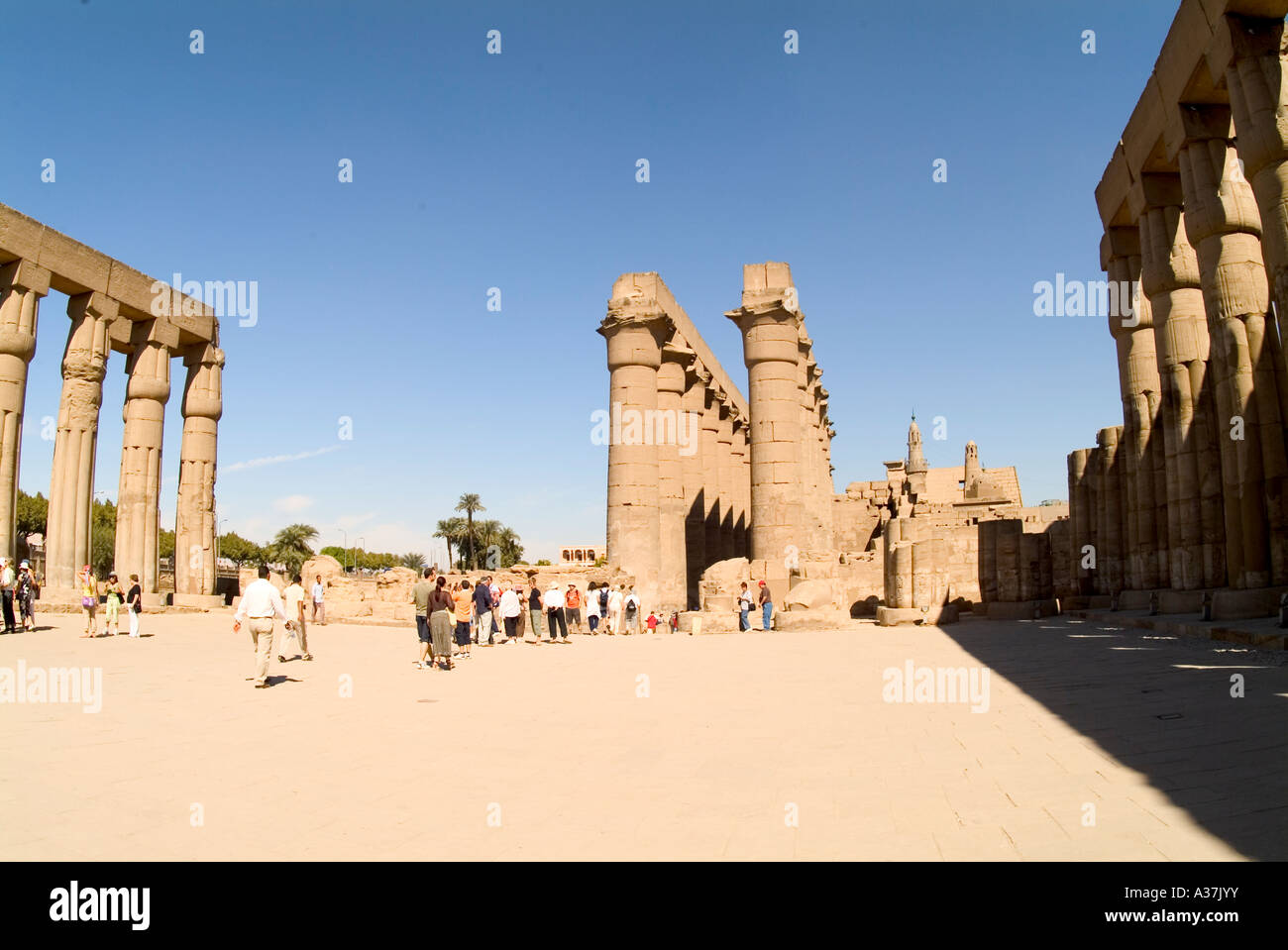 Columns For Decorations Luxor Temple Columns Hieroglyphics Ramses Ii Nefertari Decorations